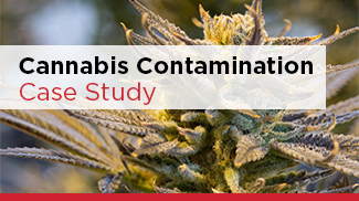 Cannabis Contamination Case Study Thumbnail 325x182