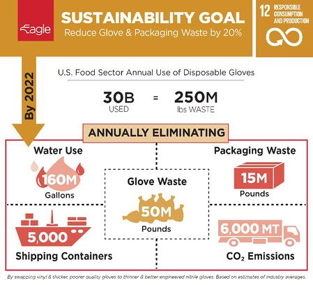 Eagle Sustainability Goal Infographic