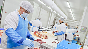 Disposable Clothing Meat Cutting - Vipavlenkoff_Shutterstock