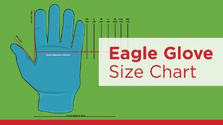 Eagle Protect disposable Glove Size Chart