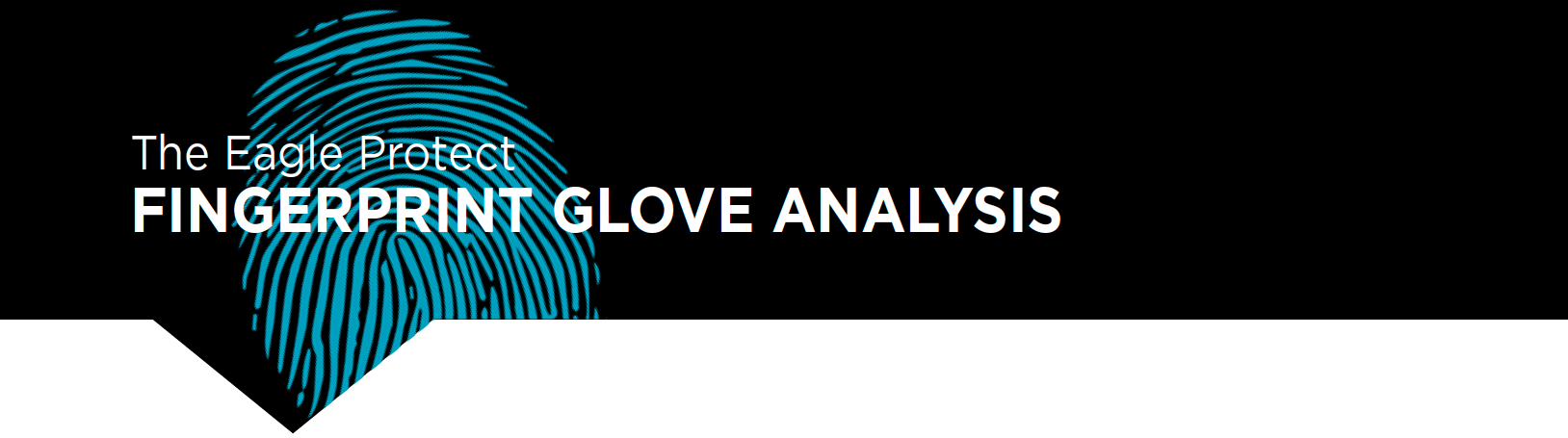 Fingerprint Glove Analysis Check Summary
