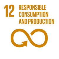 UN SDG 12 responsible consumption and production