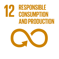 UN SDG 12 responsible consumption and production