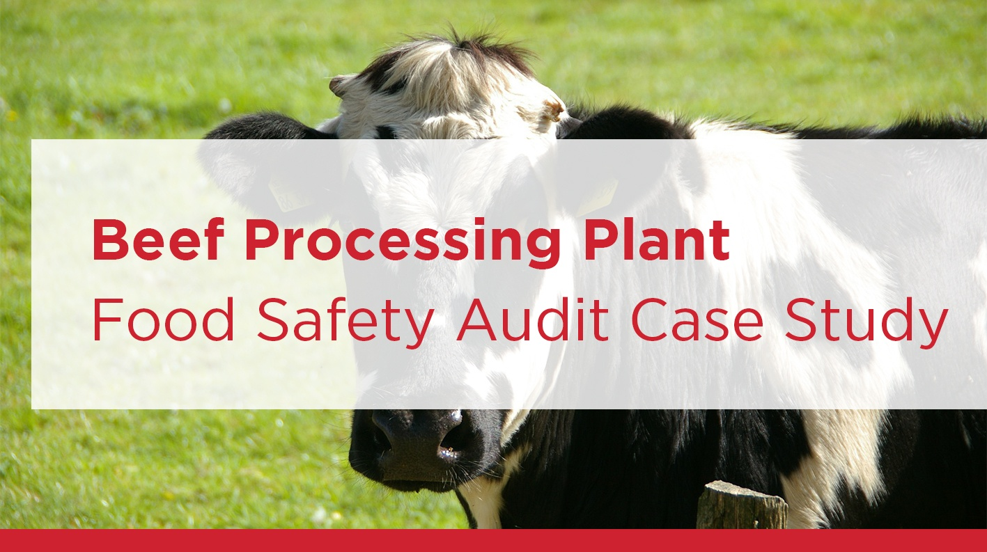 Eagle Protect Beef Producer Case Study disposable gloves and clothing